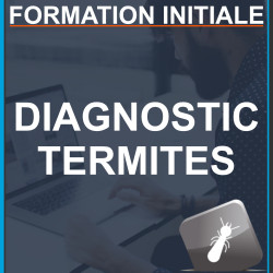 Formation Termites - Initiale