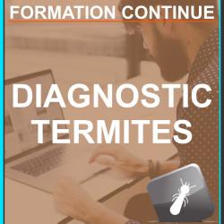 Formation Termites - Continue